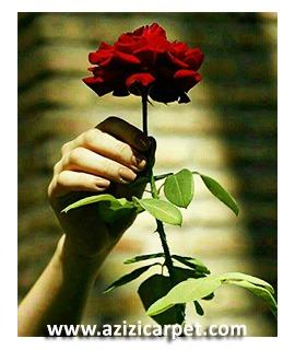 نخ و نقشه گل رز
